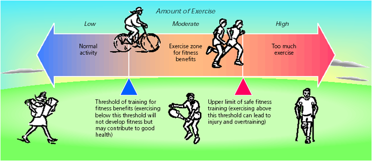 benefits of exercise essay